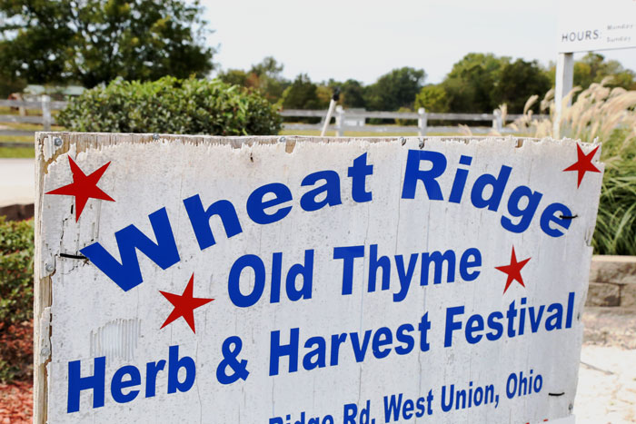 old-thyme-festival