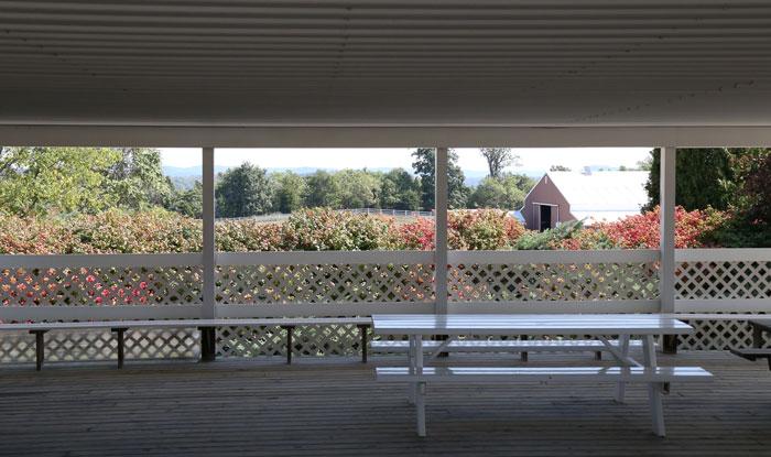 millers picnic area adams county ohio