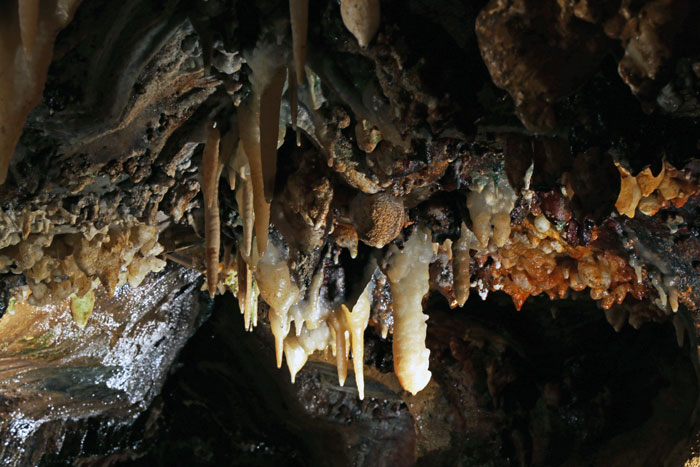 stalactite celing formations at ohio cavernss