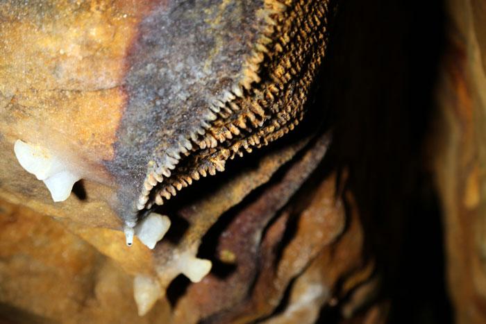 teeth formation at ohio caverns